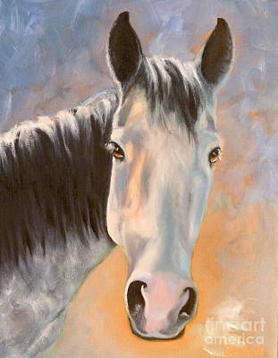 Pony Drawing - Evening Glow by Susan A Becker