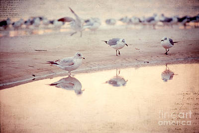 Beach Photograph - Evening Reflections by Joan McCool