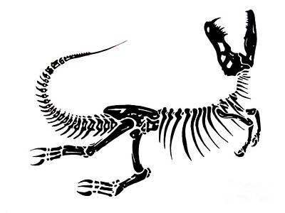 Extinction Print by Jack Norton
