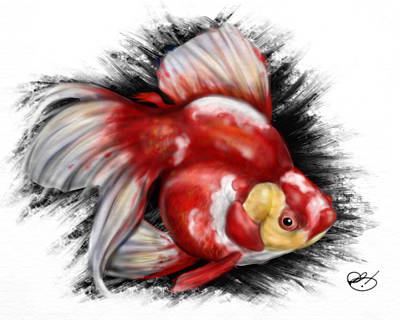Koi Drawing - F Ck Nemo by Pete Tapang