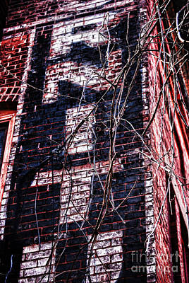Brick Building Photograph - Faded Paint And Vines by HD Connelly