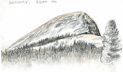 Yosemite National Park Drawing - Fairview Dome by Logan Parsons