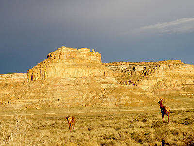 Fajada Butte At Sunset With Elk Print by Feva  Fotos