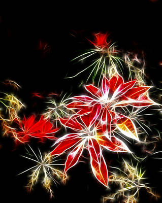 Digital Photograph - Fall Azalea Colors 2 by Cindy Wright
