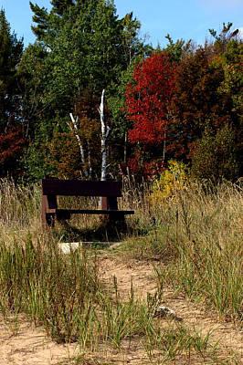 Floral Photograph - Fall Bench Dreams by LeeAnn McLaneGoetz McLaneGoetzStudioLLCcom