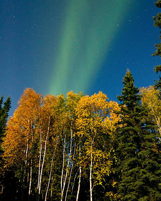 Northern Lights Photograph - Fall Color With Solar Flair-color by John Aldabe