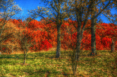 Fall Foliage Print by Ronald T Williams