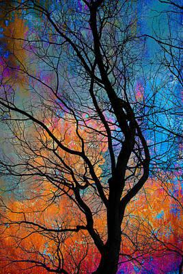Winter Promise Digital Art - Fall Magic by David Clanton