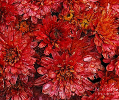 Mums Mixed Media - Fall Mums Mixed Media by Marjorie Imbeau