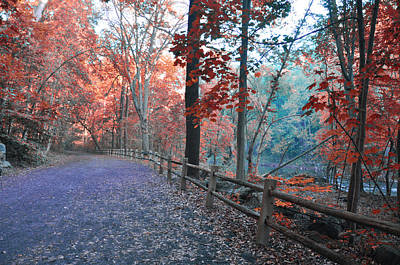 Wissahickon Creek Photograph - Fall On Forbidden Drive by Bill Cannon