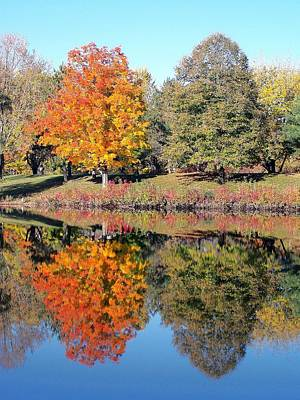 Photograph - Fall Reflections IIi by Frank LaFerriere
