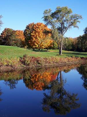 Photograph - Fall Reflections Ix by Frank LaFerriere