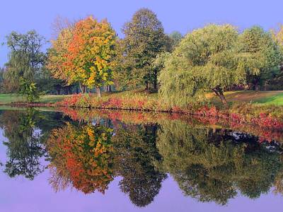 Photograph - Fall Reflections V by Frank LaFerriere