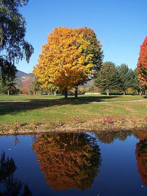 Photograph - Fall Reflections Vi by Frank LaFerriere