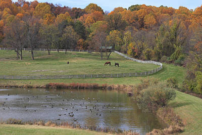 Fall Scenic Of Horse Farm And Pond Print by George Grall