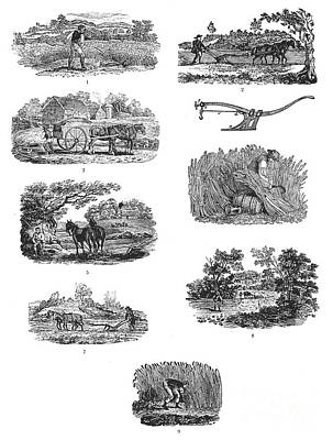 Horse-drawn Plow Photograph - Farming, 19th Century by Granger
