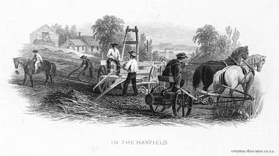 Horse-drawn Plow Photograph - Farming, C1870 by Granger