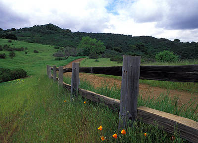 Fence And Poppies Print by Kathy Yates
