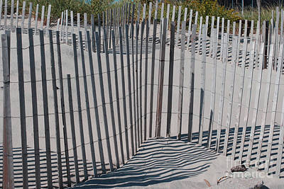 Fence Patterns II Print by Andrea Simon