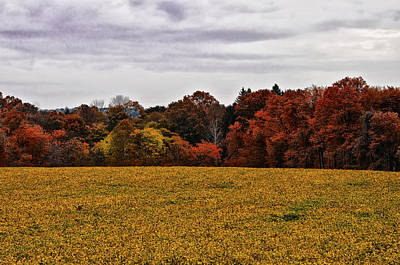 Fields Of Gold Print by Bill Cannon