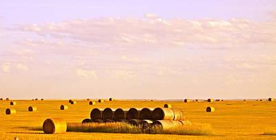 Fields Of Plenty Print by Kate Purdy