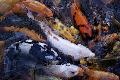 Fish Frenzy Print by Justin  Curry