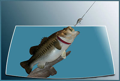 Large Mouth Bass Digital Art - Fish Mount Set 13 D by Thomas Woolworth