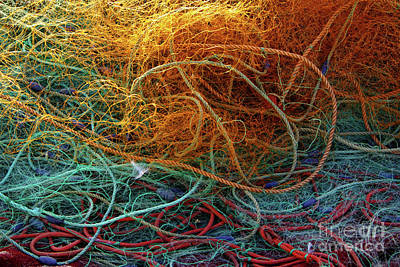 Routine Photograph - Fishing Nets by Carlos Caetano