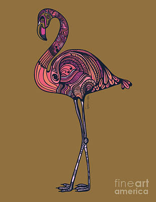 Birds Drawing - Flamingo by HD Connelly