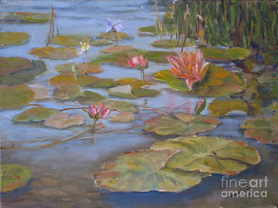Floating Lillies Original by Mohamed Hirji