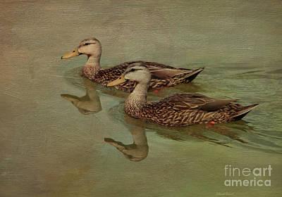 Waterfowl Mixed Media - Floating On By by Deborah Benoit
