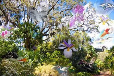 Florida Flowers Digital Art - Florida Collage by Betsy Knapp