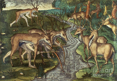 Florida: Hunters, C1591 Print by Granger