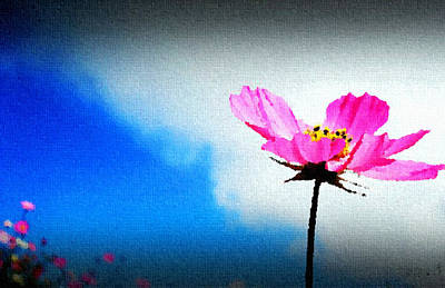 Oil Lamp Drawing - Flower And Sky by Sanjay Avasarala