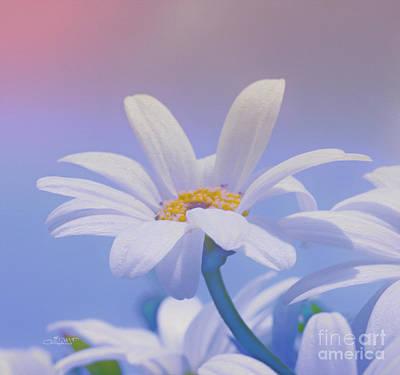 Flower For You Print by Jutta Maria Pusl