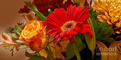 Flowergreetings Photograph - Flower Greetings by Lutz Baar