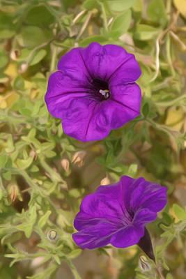 Petal Digital Art - Flower Painting 0006 by Metro DC Photography