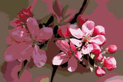 Flowering Crabapple Posterized Print by Mark J Seefeldt