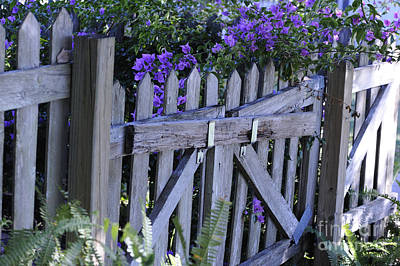 Flowers On A Fence Print by Nancy Greenland