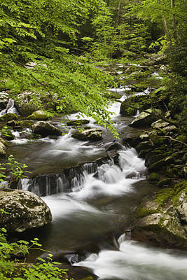 Flowing Mountain Stream Print by Andrew Soundarajan