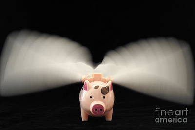 Flying Pig Toy With Wings Print by Sami Sarkis