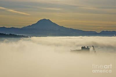 Tacoma Photograph - Foggy Basin by Sean Griffin