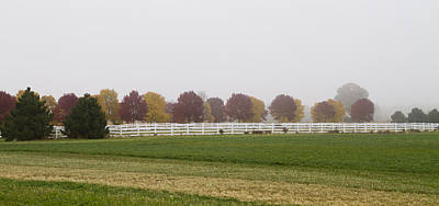 Foggy Fall Print by Joel Witmeyer