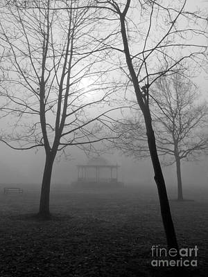 Kujo Photograph - Foggy Morning In The Park by Karin Ubeleis-Jones