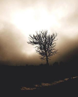 Foggy Winter Morning Original by Ann Powell