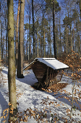 Food Point For Animals In Winterly Forest Print by Matthias Hauser