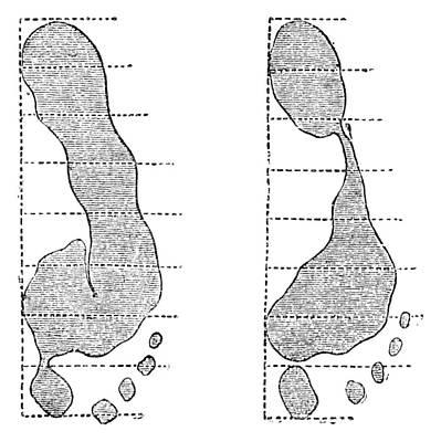 Footprint Forensics, 19th Century Print by