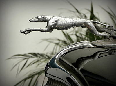 Ford Greyhound Radiator Cap Print by Karyn Robinson