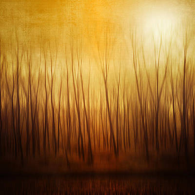 Bare Trees Photograph - Forest by Philippe Sainte-Laudy Photography