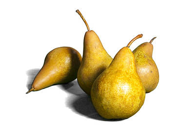 Four Pears On White Print by Randall Nyhof